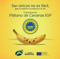 caratula PdC IGP