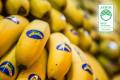 Bodegón plátanos huella