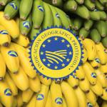 bodegón sello IGP Plátano de Canarias